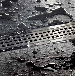 Shower linear drain
